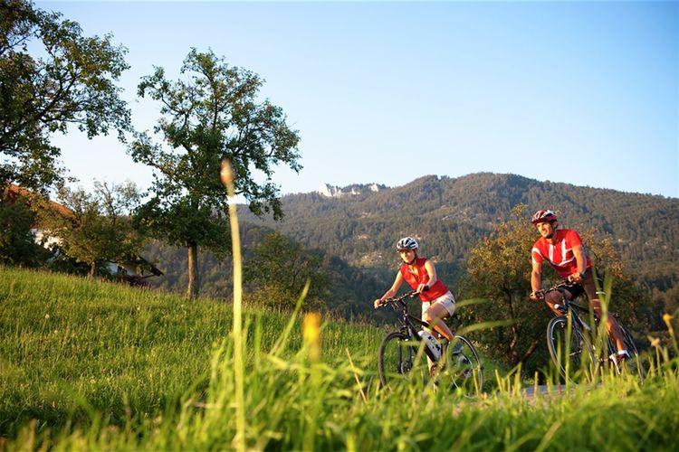 Ferienwohnung Luxery Salzkammergut Chalet 3 (580241), Obertraun, Salzkammergut, Oberösterreich, Österreich, Bild 22