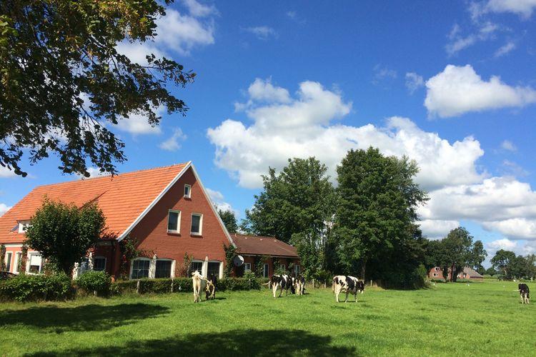 Vakantiehuis  met wifi  BackemoorVilla Ostfriesland XL
