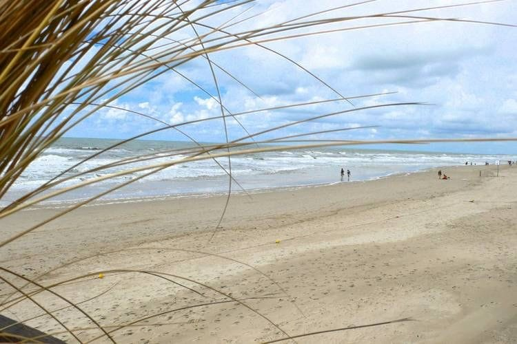 Holland | North Sea Coast North | Holiday home Duynpark Het Zwanenwater - Sea Lodge Callantsoog 6 | all year | AreaSummer5KM