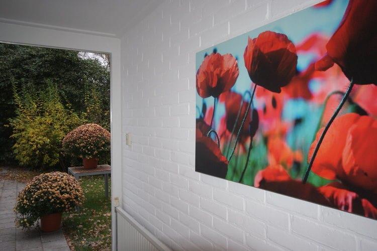 Villa Nederland, Overijssel, Bergentheim Villa NL-7691-07