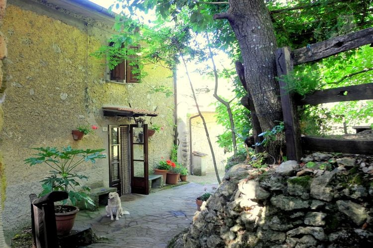 Stella - Accommodation - Camaiore