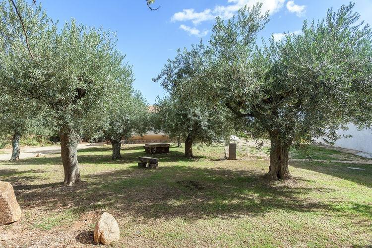 Holiday house Il Paradiso degli Ulivi A (597471), Orosei, Nuoro, Sardinia, Italy, picture 22
