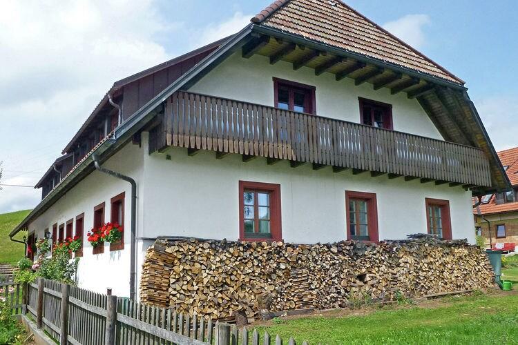 Appartement Duitsland, Baden-Wurttemberg, Rickenbach ort Hottingen Appartement DE-79736-11