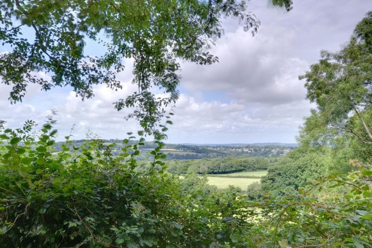 Holiday house Sugarloaf Cottage (615310), Brightling, Sussex - Brighton, England, United Kingdom, picture 15