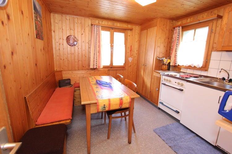 Chalet Zwitserland, Jura, Bister Chalet CH-3983-54