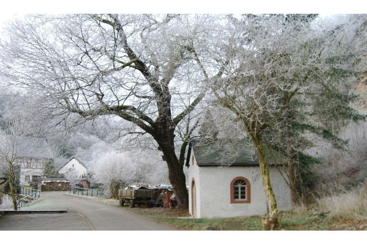 Ferienwohnung Blumenthal (628925), Nohn, Vulkaneifel, Rheinland-Pfalz, Deutschland, Bild 13