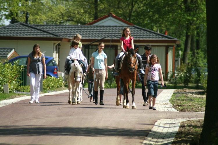 Ferienhaus Resort Limburg (620290), Echt, , Limburg (NL), Niederlande, Bild 17