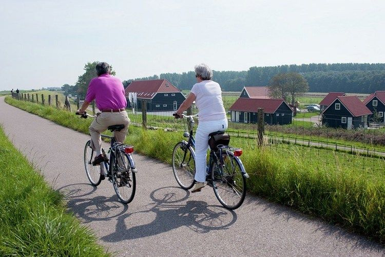 Holland | Zeeland | Holiday home Recreatiepark de Stelhoeve - Familiehuis Oostersch | all year | AreaSummer1KM