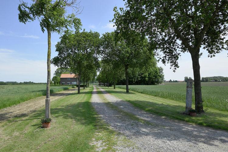 Boerderij Nederland, Zeeland, Zuidzande Boerderij NL-4505-01