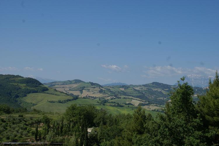 Ferienwohnung Casa Giglio (653440), Montelparo, Fermo, Marken, Italien, Bild 25