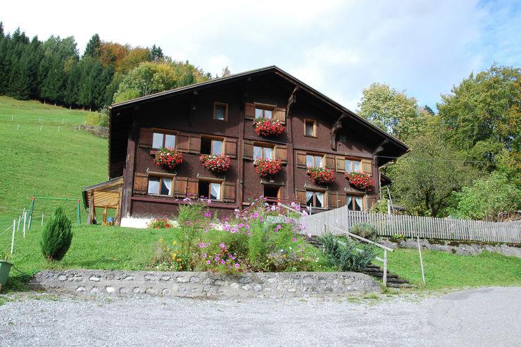 Appartement  met wifi  VorarlbergRinderer