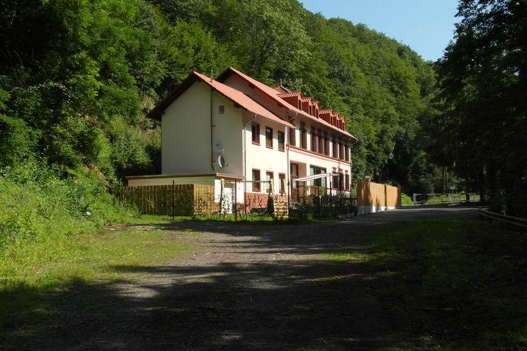 vakantiehuis Duitsland, Eifel, Speicher vakantiehuis DE-54662-05