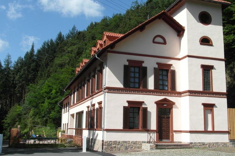 Duitsland | Eifel | Vakantiehuis te huur in Speicher met zwembad  met wifi 16 personen