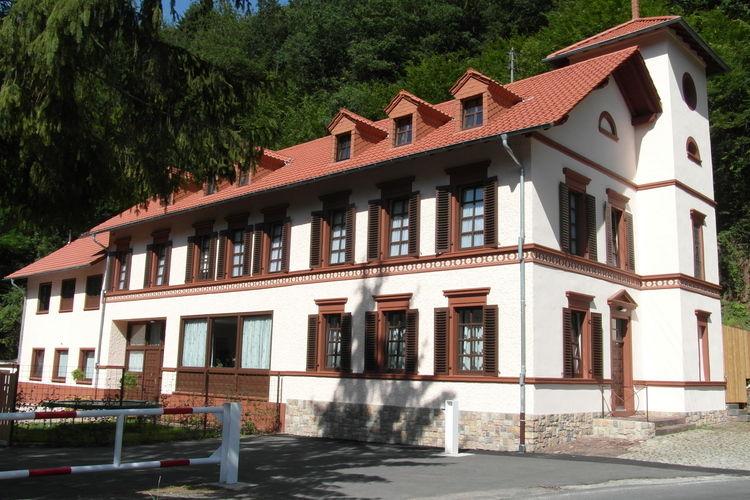 vakantiehuis Duitsland, Eifel, Speicher vakantiehuis DE-54662-06