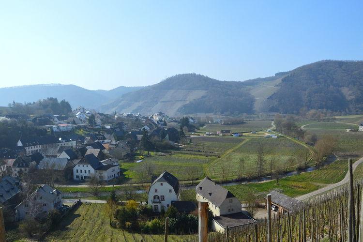 Holiday house Josefine (662116), Bruttig-Fankel, Mosel-Saar, Rhineland-Palatinate, Germany, picture 23