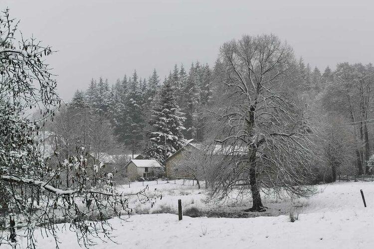 Ferienhaus Geräumiges Ferienhaus mit Garten in Burtonville, Luxemburg (1038715), Vielsalm, Luxemburg (BE), Wallonien, Belgien, Bild 41